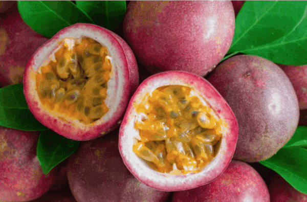 Fresh passion fruit export of Nafoods