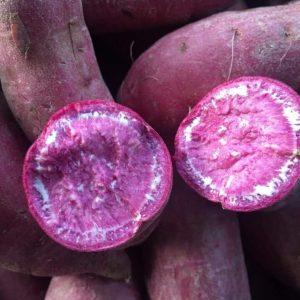 Purple Flesh Sweet Potato - Khoai Lang Tím - 紫皮地瓜