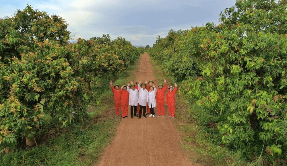 The Nafoods Fresh Fruit Farm